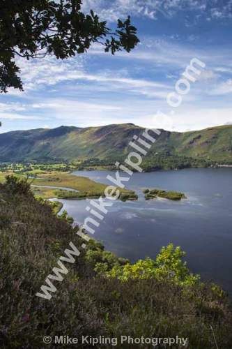 Surprise View over Derwentwater, Lake District National Park - Cumbria, Derwentwater, Lake District, view, vista, heather, Borrowdale,