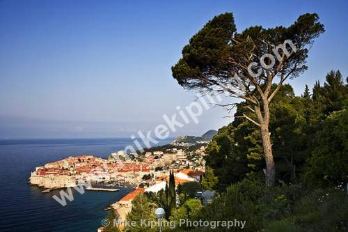 Dubrovnik Croatia - dubrovnik, croatia, city, history, UNESCO, world, heritage, site, adriatic, travel, tourist, destination, cypress, trees,