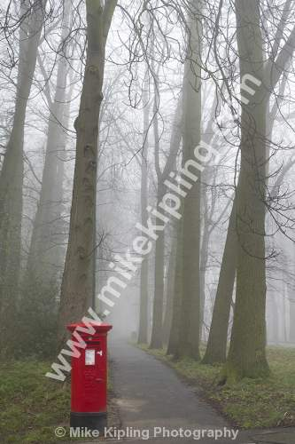 Red Pillar Box in Fog and Avenue of Trees - Red Pillar Box, Mail. Foffy, Misst, Trees, Post,