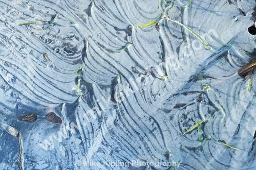 Patterns in Ice - Frozen, Water, Puddle, Frost, Pattern, Cold, Ice,