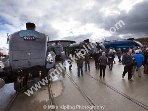 Class A4 sister engines gather for Great Goodbye at Shildon, County Durham - County Durham, Shildon, National Railway, Museum, Great, Gathering, Class A4, steam, engines,