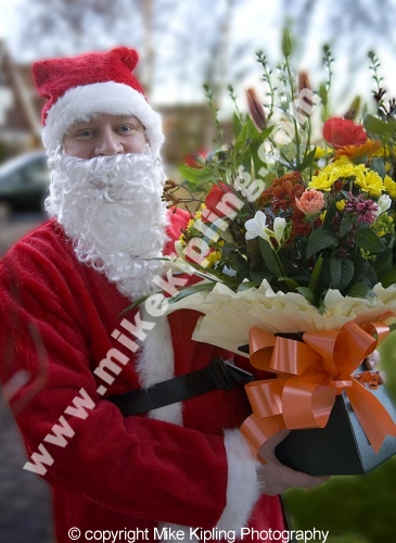 Christmas Flower Delivery - santa people lifestyle red flowers florist santa clause