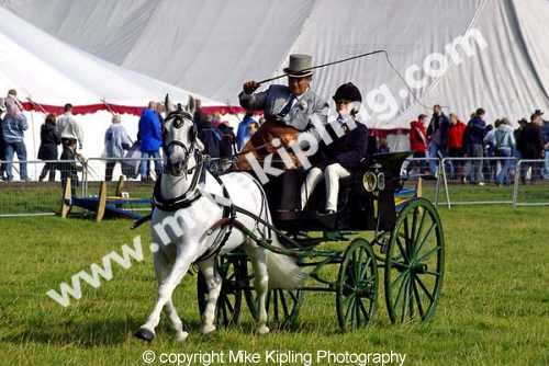 Stokesley Agricultural Show<br />North Yorkshire - show livestock judging events