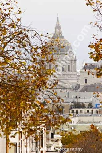 City Hall from Alamy Square at Autumn, San Francisco, USA - San Fancisco, California, city, hall, autumn,