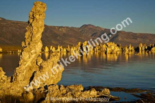 Dawn at Mono Lake, California, USA - USA, California, Mono Lake, dawn, tufta,