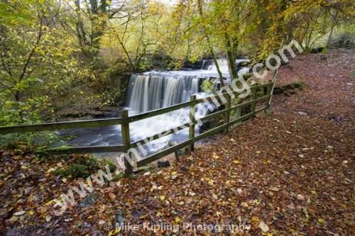 Crackpot Falls, Swaledale Yorkshire Dales National Park - Yorkshire, Swaledale, Crackpot, Waterfall, Autumn, Stream, Fence, Fallen, Leaves,