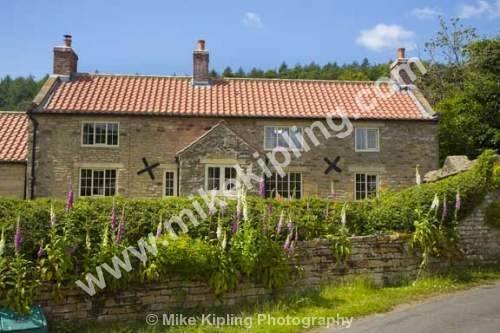 Cottage and Fox Gloves. Hutton le Hole, North Yorkshire - Yorkshire, Hutton le Hole, Cottage, Village, Flowers, Foxgloves,