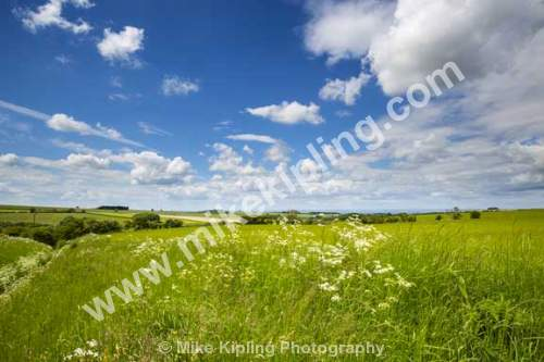 Landscape near Warram Percy, Yorkshire Wolds south of Malton - Yorkshire, Wolds, Wharram, Percy, Fields, Landscape,